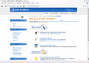 KDE 4 Beta 3 - Konqueror